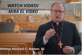 WATCH VIDEO/MIRA EL VIDEO